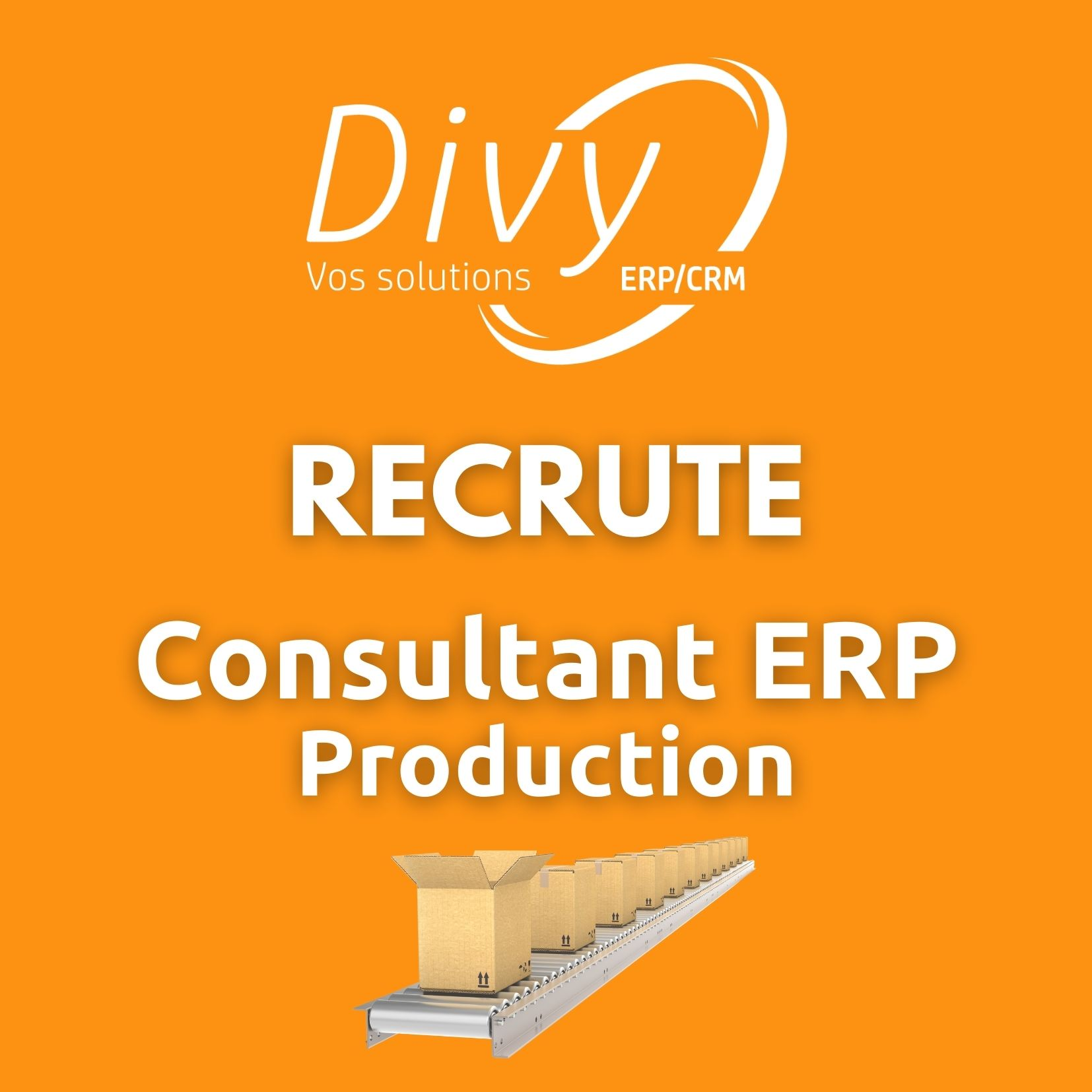 Consultant ERP Production
